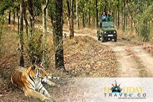 Madhya Pradesh Top Attractions