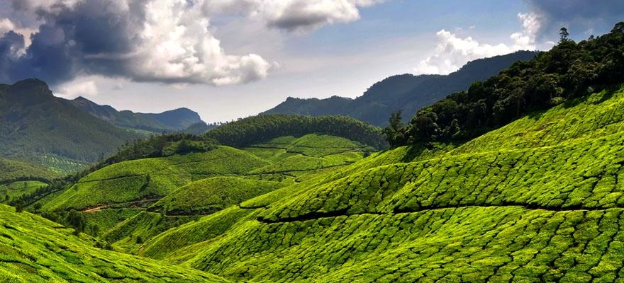 Munnar Tourist Destination
