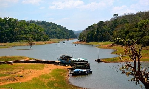 Thekkady Periyar Tourist Guide and Deals