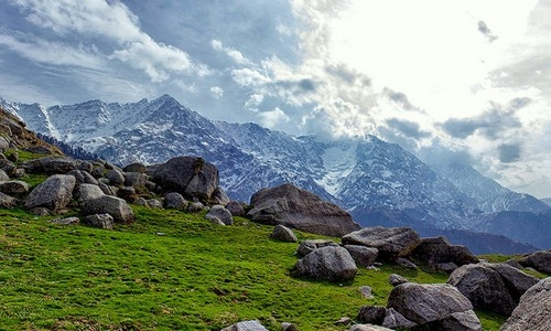 Tabo Himachal Pradesh Tourist Guide