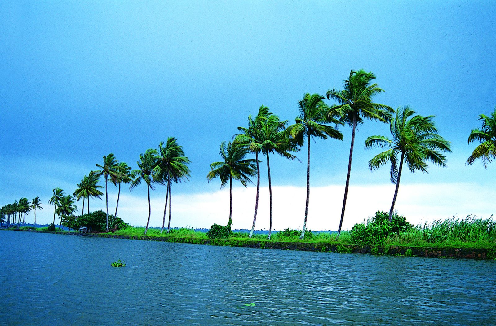 About Kerala Blue Tour Package.jpg
