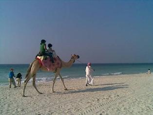 Ajman Tourist Attractions - Ajman beach