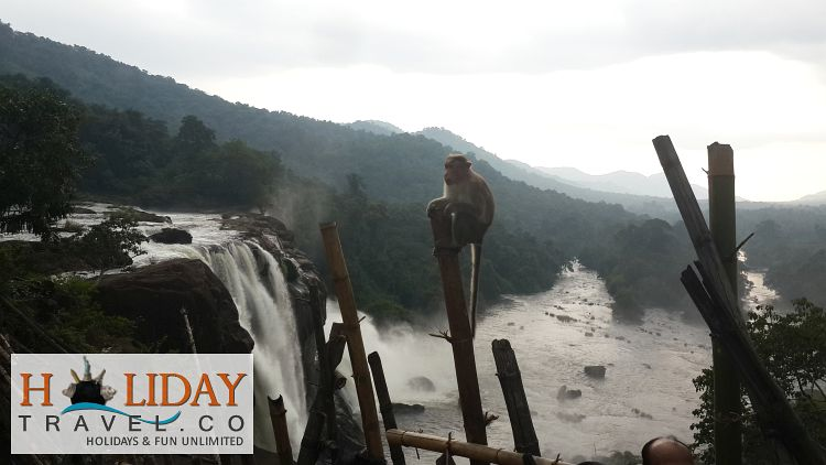 Athirappilly-Falls-View-from-top-with-Monkey