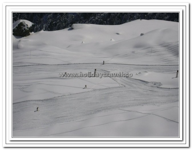 Tourists Enjoying Skiing in Auli - A paradise of Adventure
