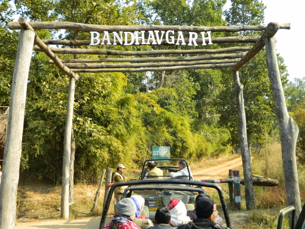 Bandhavgarh National Park entry
