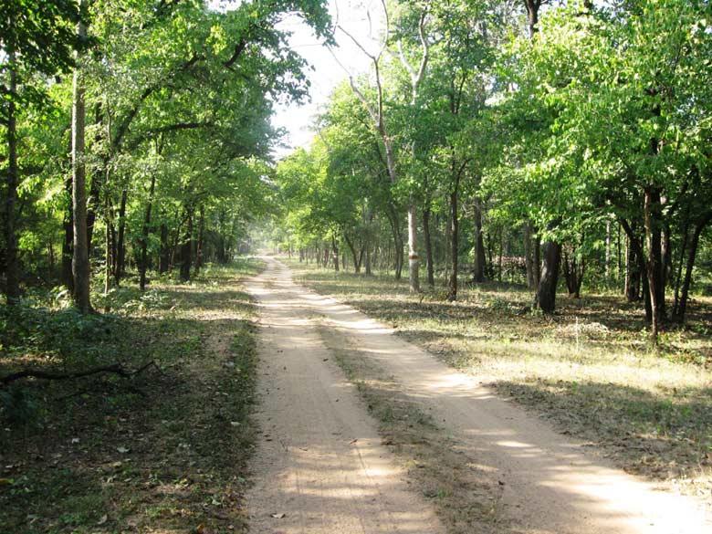 Barnawapara