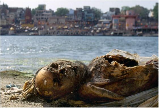 Dead Bodies in Varanasi in Ganga