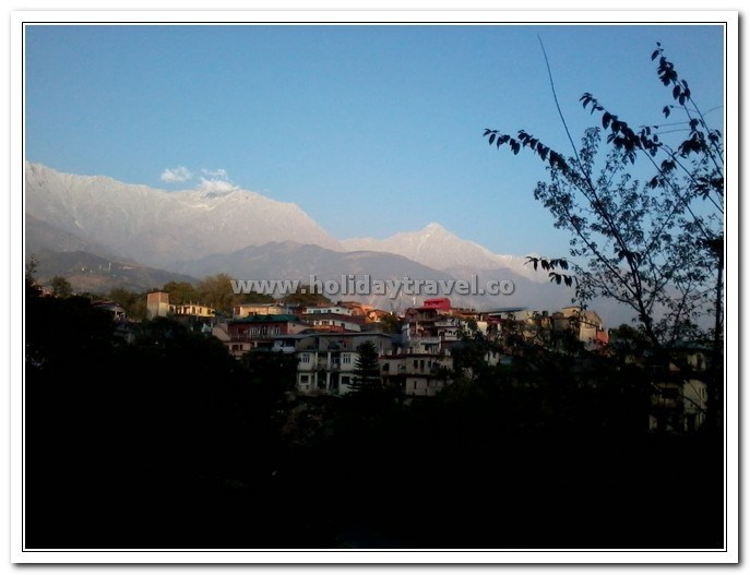Dhauladhar inthe background of Kacheri Adda Dharamshala