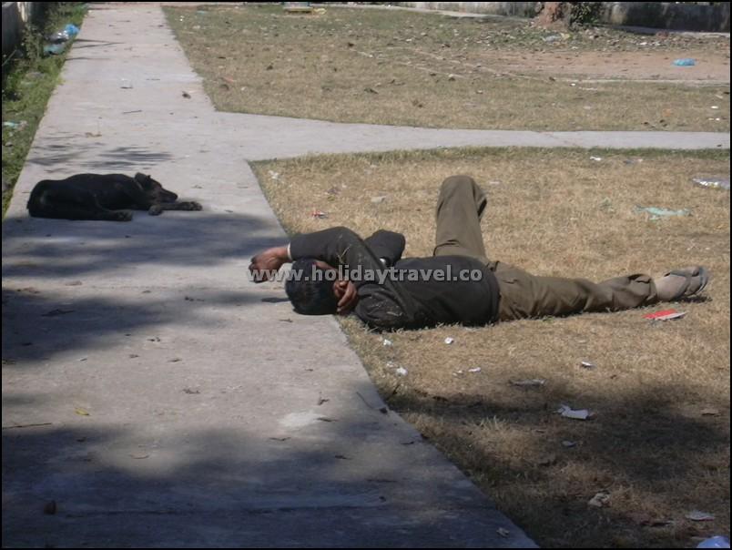DogManSleeping_ShimlaHimachal