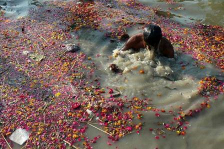 DEvotee Bathing in Polluted Ganga