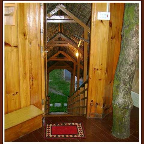 Manali Tree House Cottage Stay Tour package