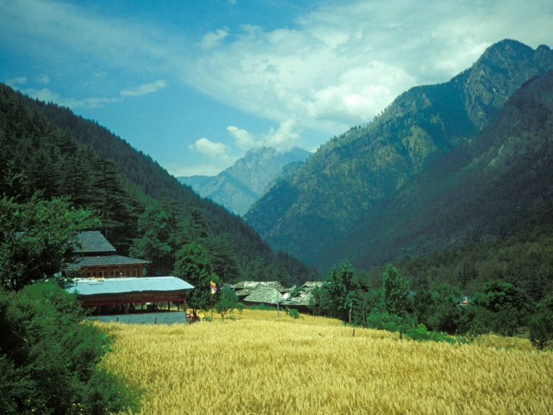 Kasol The Little Israel and Europe in Indian.jpg