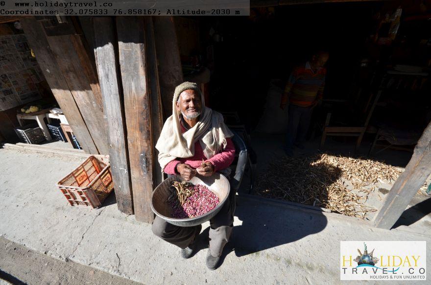 Lohardi-Village-ShopKeeper-Extracting-KidneyBeans-Most-Special-Tasty-Crop-of-Lohardi