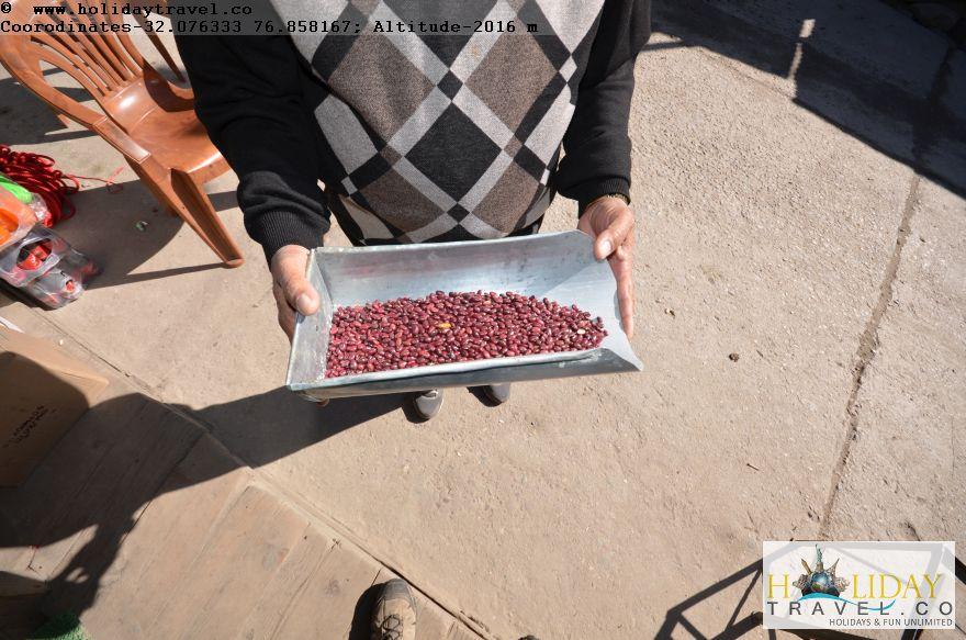 Lohari-Barot-Special-Red-Small-Rajmah-KidneyBeans