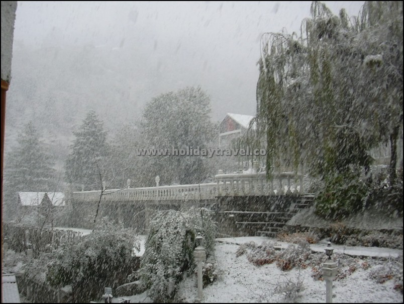 Manali_SnowFallLive_Picture