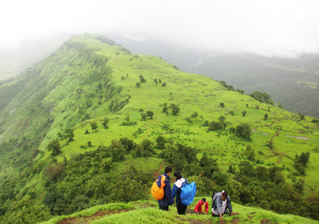 What is unique in Matheran India Family Holidays and why? Matheran is a splendid hill destination, this cool friendly hill station is sit at the ranges of the Sahyadri Mountains. The vehicles are banned from entering the hill station limits. Matheran is endowed with 38 peak points' fornature lovers and adventure seekers. The name Matheran implies 'Jungle Head', or 'Forest on Top.   Matheran India Family Holidays is planned specially for you to include some enjoyment in your holidays with family. In this package you will experience famous and viral activities of Matheran which are Trekking, Horse Riding, Nature walk, Enjoyment through Toy Train.