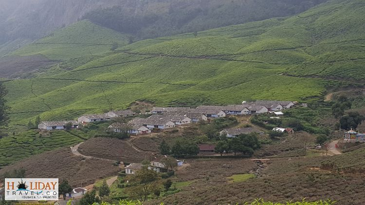 Munnar-Tour-Great-Panorrmic-View