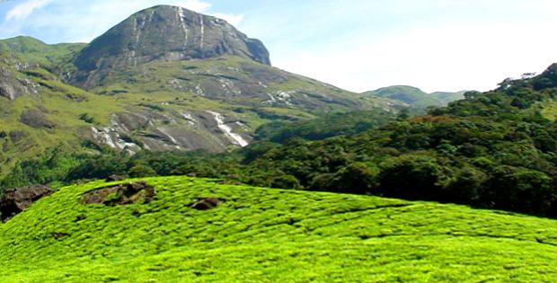 Munnar-Tour-anamudi-peak