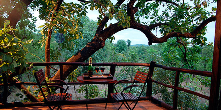 Tree House Hideaway - Bandhavgarh facility