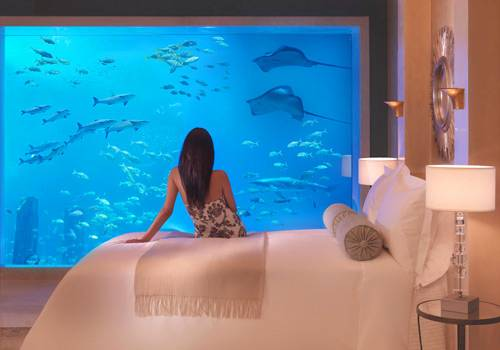 Atlantis Hotel Room View with Huge Acquarium with Sharks & Other Sea Creatures