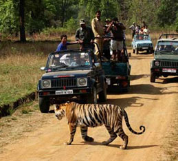 jeep-safari-bandhavgarh-2.jpg