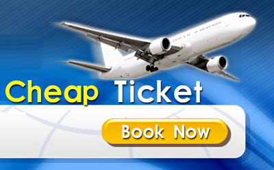 Domestic Airfares Getting Extra Inexpensive